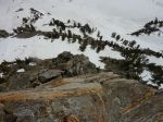 Belay ledge above P3