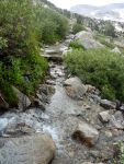 """Trail"" west of Piute Pass"