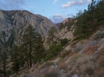 View up Sawmill Canyon