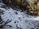 Snow on Keynot