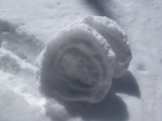 """Twin """"snow roses"""""""