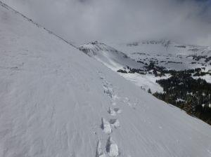 View back along ridge