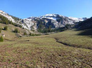 Meadow where the trail dies