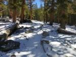Chagoopa Plateau trail